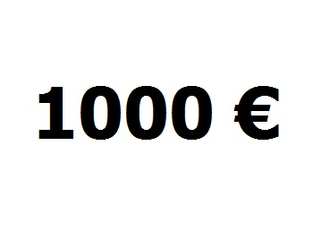 lainaa-1000-euroa