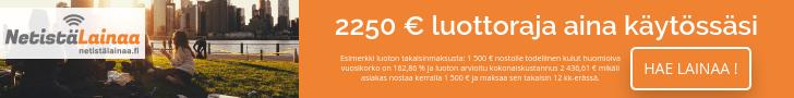 Netistälainaa.fi 100 - 2250 euroa.