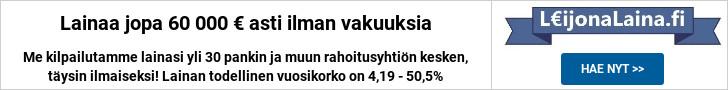 LeijonaLaina.fi - Lainaa 100-60.000 €